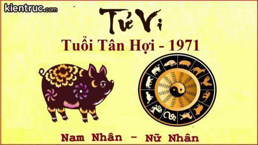 nam-2019-xay-nha-huong-nao-hut-tai-loc-nhat-cho-gia-chu15508222653